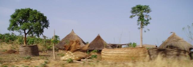 Serengeti Park Freikarte 2017: Gratis-Eintritt für 1 Kind in Begleitung eines Vollzahlers (2 für 1 Gutschein) oder 50% Rabatt für bis zu 5 Personen dank Rossmann