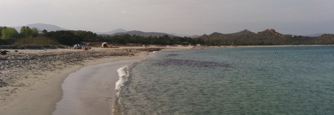 Mallorca-Urlaub: 7 Nächte im 4* Hotel Viva Cala Mesquida Resort für 333 € p.P.