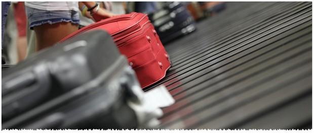 ALDI Trolleys und Koffer